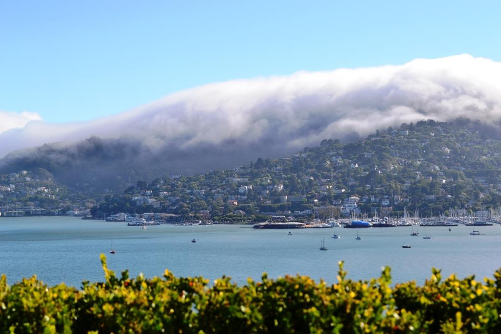 19-Tiburon-Bellview-CA_web.JPG